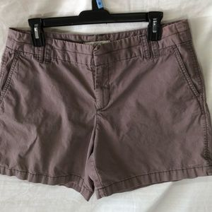 Ann Taylor LOFT Brown Shorts